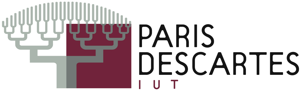 logo_iut_descartes